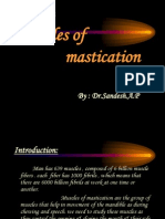 Muscles of Mastication3