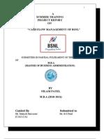 NILAMprojectreport.doc
