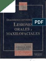 Diagnóstico Diferencial De Las Lesiones Orales Y Maxilofaciales
