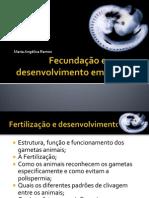 Fecundação e desenvolvimento em animais