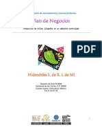 Hidrochiles y su Plan de Negocios / Proyecto Final de la materia de Administración de Proyectos 2011-08