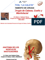 anatomiadelosmusculosmasticadores-110718162027-phpapp01