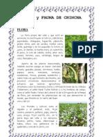Flora y Fauna de Chincha