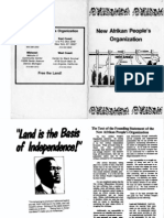 New Afrikan Peoples Organization