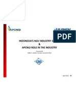 Ngv Industry Status and Apcngi Role
