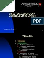 Metabolismo.de.Lipidos.641748298