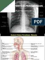 fisiologi pernafasan