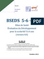 BESDS_v4.pdf