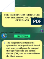 Biology Form 4 Chapter 7 Respiration