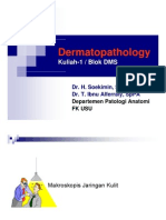 Dms146 Slide Dermatopathology