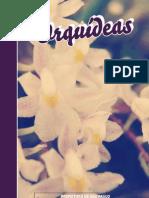 Curso Orquideas 21 Dez