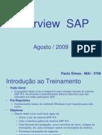 Treinamento SAP Overview1