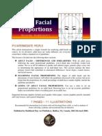 Adult Facial Proportions