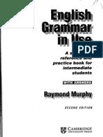 Grammar In Use Raymond Murphy Pdf