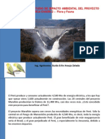 observaciones a EIA hidroeléctrica chadín 2, Río Marañón, Celendín.pdf
