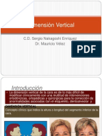 Dimension Vertical (2)