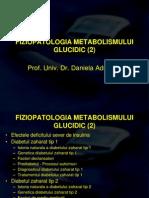 8. metab glucidic 2