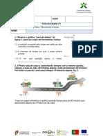 Ficha de  trabalho nº1 -ufcd- movimentos e forças