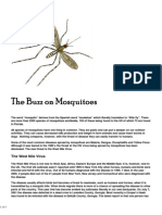 Mosquitos - The Buzz on Mosquitoes