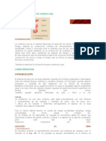 Manual de colocación de cerámica roja