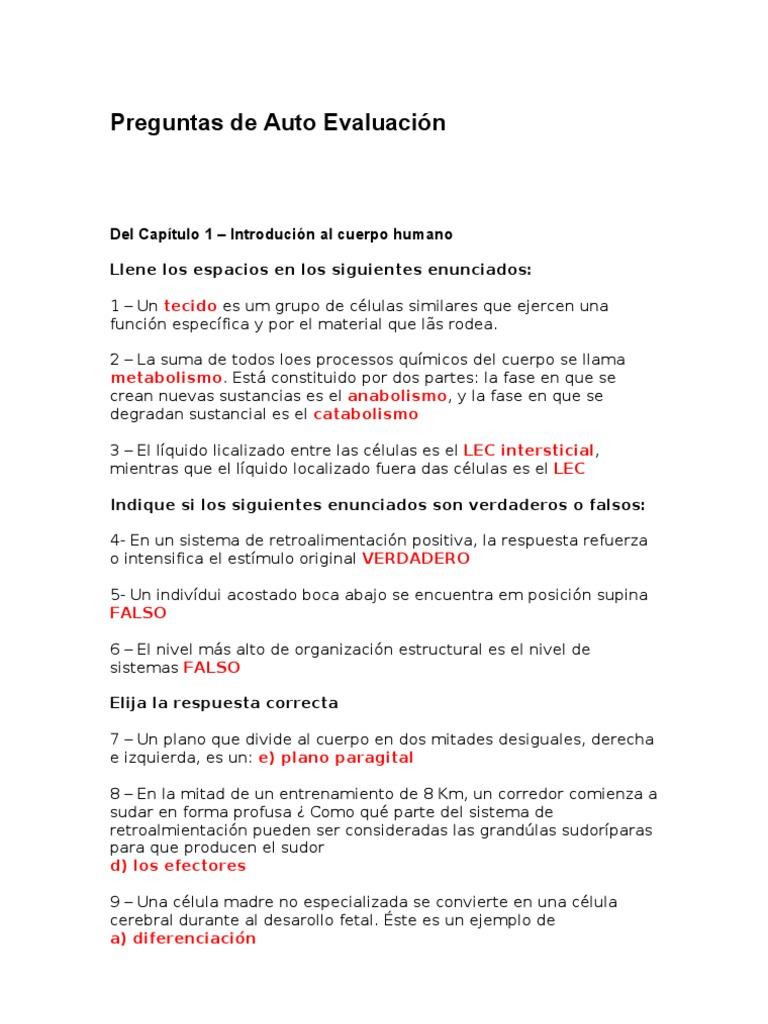 Hermosa Anatomía Y Fisiología Capítulo 1 Organización De Las ...