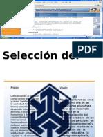 Seleccion Del Personal - Miguel