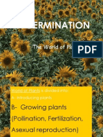 Growing Plants / Germination