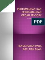 Pertumbuhan Dan Perkembangan Organ Sensory