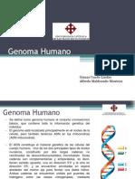 Etica-genomahumano