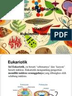 Asal-Usul Sel Eukariotik