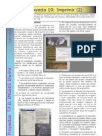 Proyecto 10 Imprimir (2).pdf
