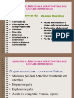 ASPECTOS CLÍNICOS DAS HEPATOPATIAS NOS ANIMAIS DOMÉSTICOS