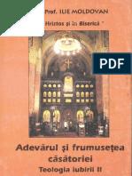 Adevăƒrul și frumusețea în căsătorie - Teologia iubirii vol-2 - Pr. Ilie Moldovan