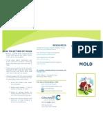 mold final