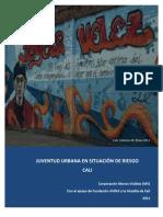 Informe Cali- Juventud en Riesgo 2011