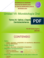 Tema 25. Depositos Dentobacterianos