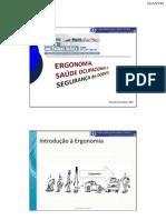 Ergonomia e Saúde Ocupacional em Hospitais - Florentino Serranheira 2011