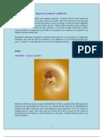 Ingerii-şi-semnele-zodiacale-2