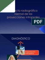 ERIKA ENOKI Aspecto radiográfico normal