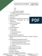 PROGRAMA ANUAL DE SEGURIDAD E HIGIENE 2013.docx