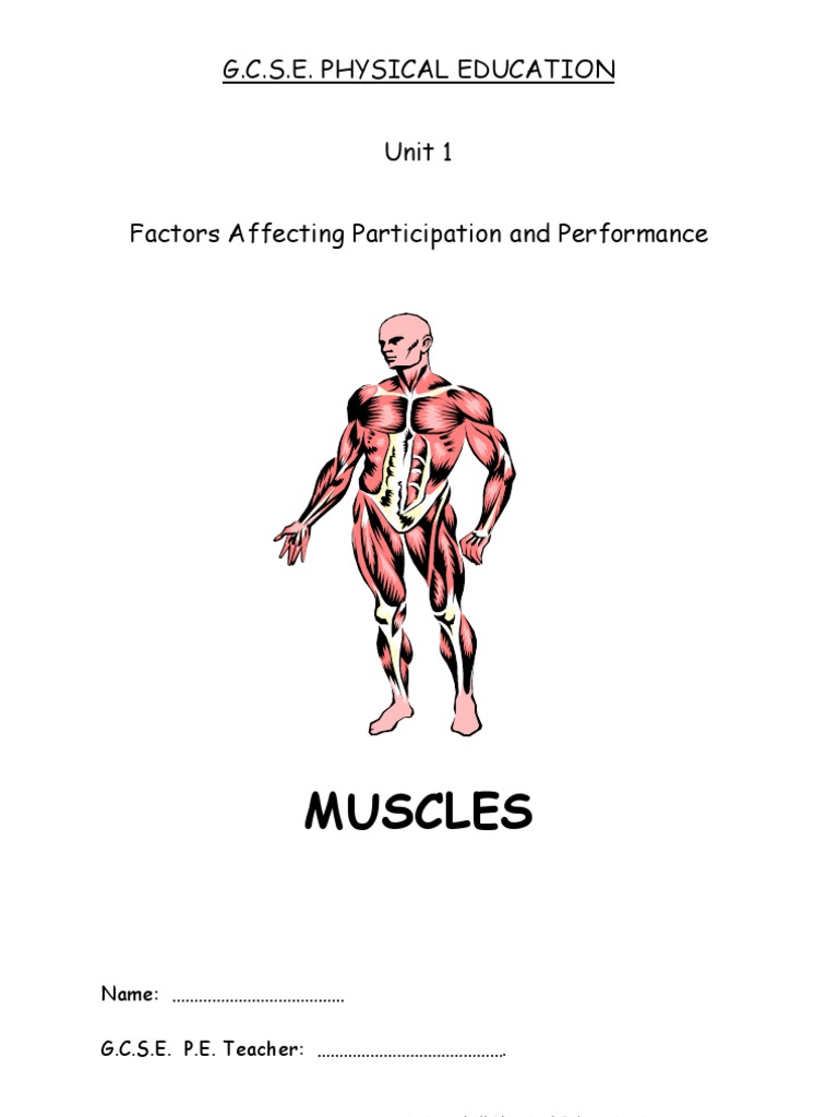 Atemberaubend Unit 1 Principles Of Anatomy And Physiology In Sport ...