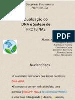 Duplicação do DNA e Síntese de proteina.pptx