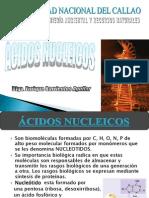 Cap 5.- Acidos Nucleicos