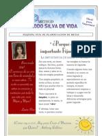 Guía de Metas 2011 Método Silva