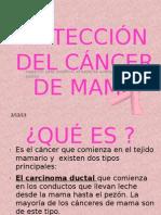 DETECCIÓN DEL CÁNCER DE MAMA