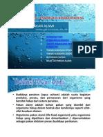 budidaya-fitoplankton