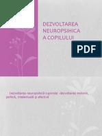 DEZVOLTAREA NEUROPSIHICA