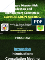 Bdrrmc Consultation
