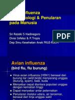 Avian Flu Transmission