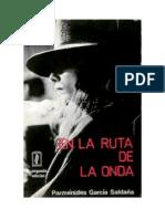 Parménides García Saldaña - En la ruta de la onda.pdf
